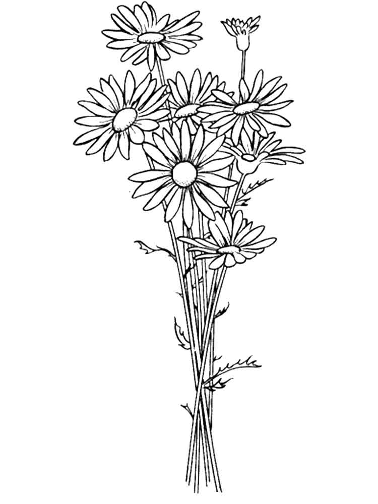 picture of flowers to print free easy to print flower coloring pages tulamama of picture to flowers print