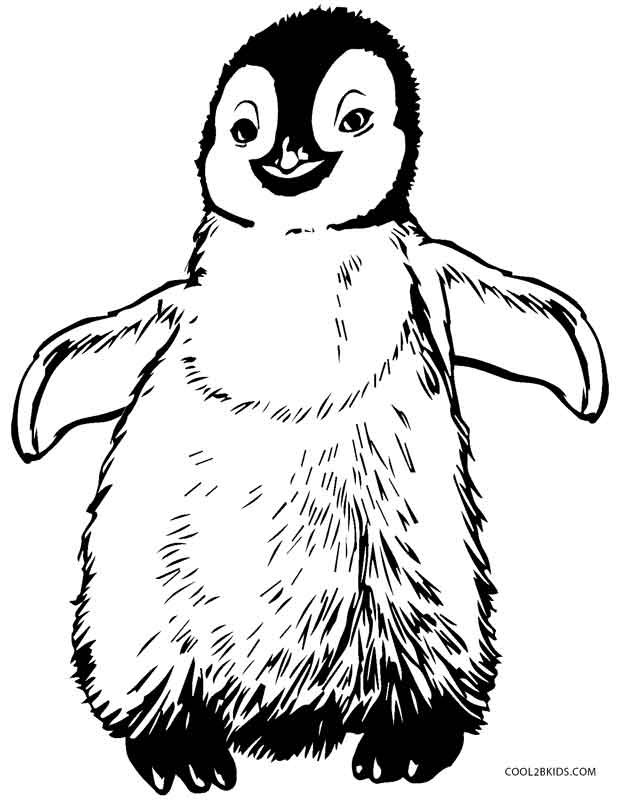picture of penguin to color cute baby penguin coloring page free printable coloring penguin of color to picture