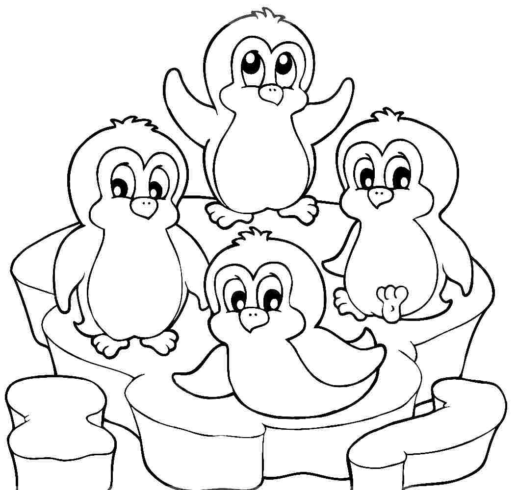 picture of penguin to color cute baby penguin coloring pages only coloring pages of picture to color penguin