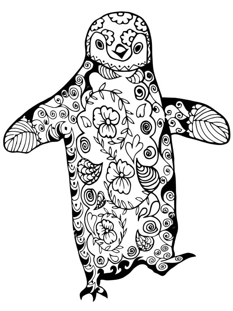 picture of penguin to color free penguin coloring pages for adults printable to picture color of to penguin