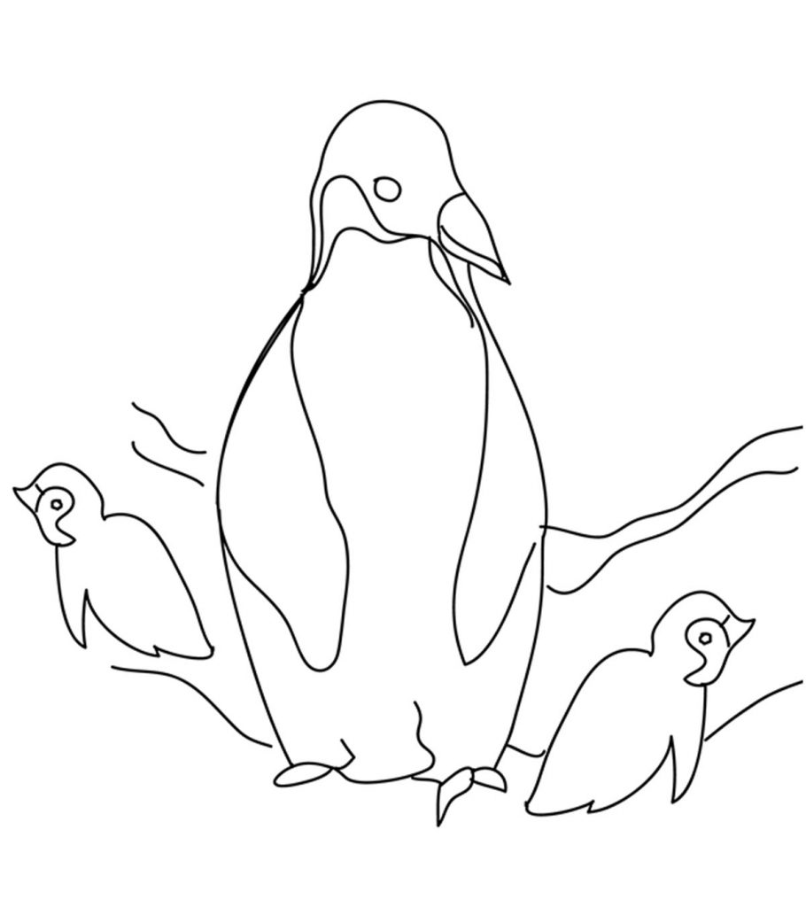 picture of penguin to color penguin coloring pages free printable for kids color picture penguin to of