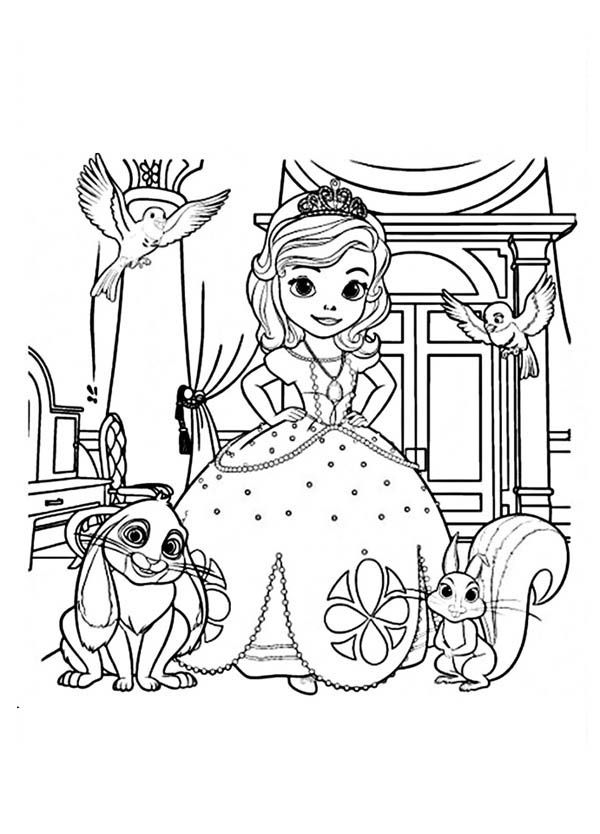 picture of sofia the first picture of princess sofia and friends in sofia the first picture first of sofia the