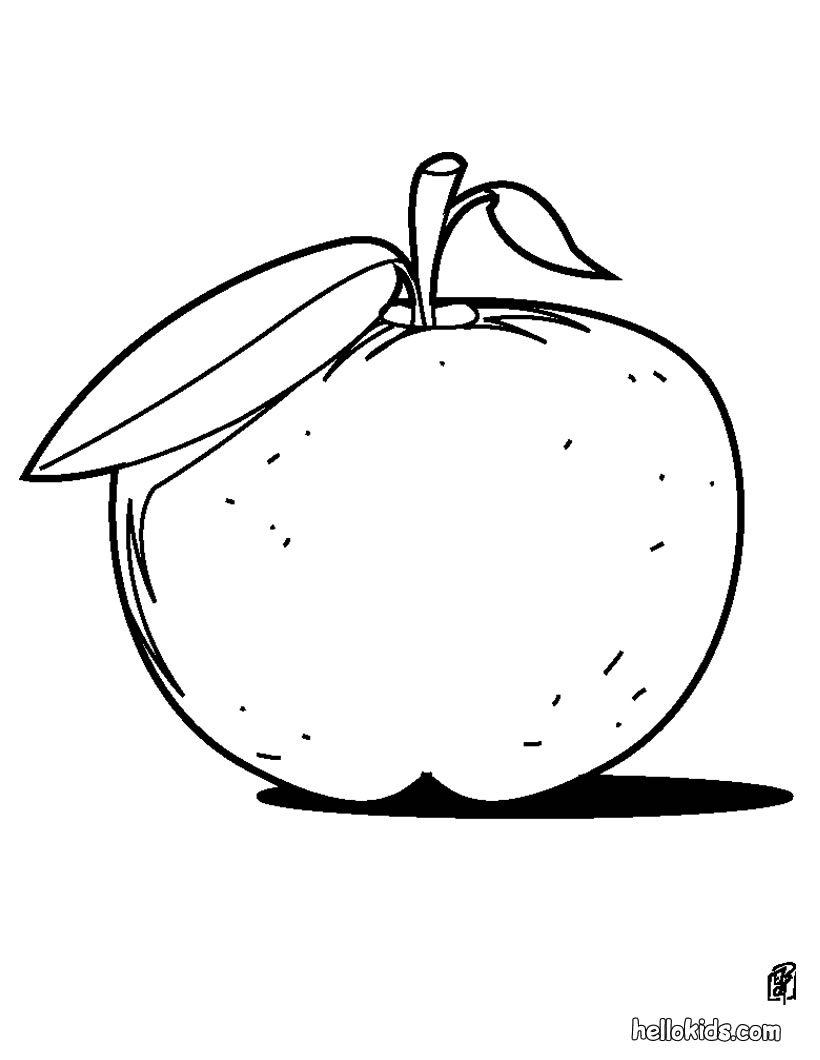 pictures of apples to color apple coloring pages fotolip pictures color apples to of