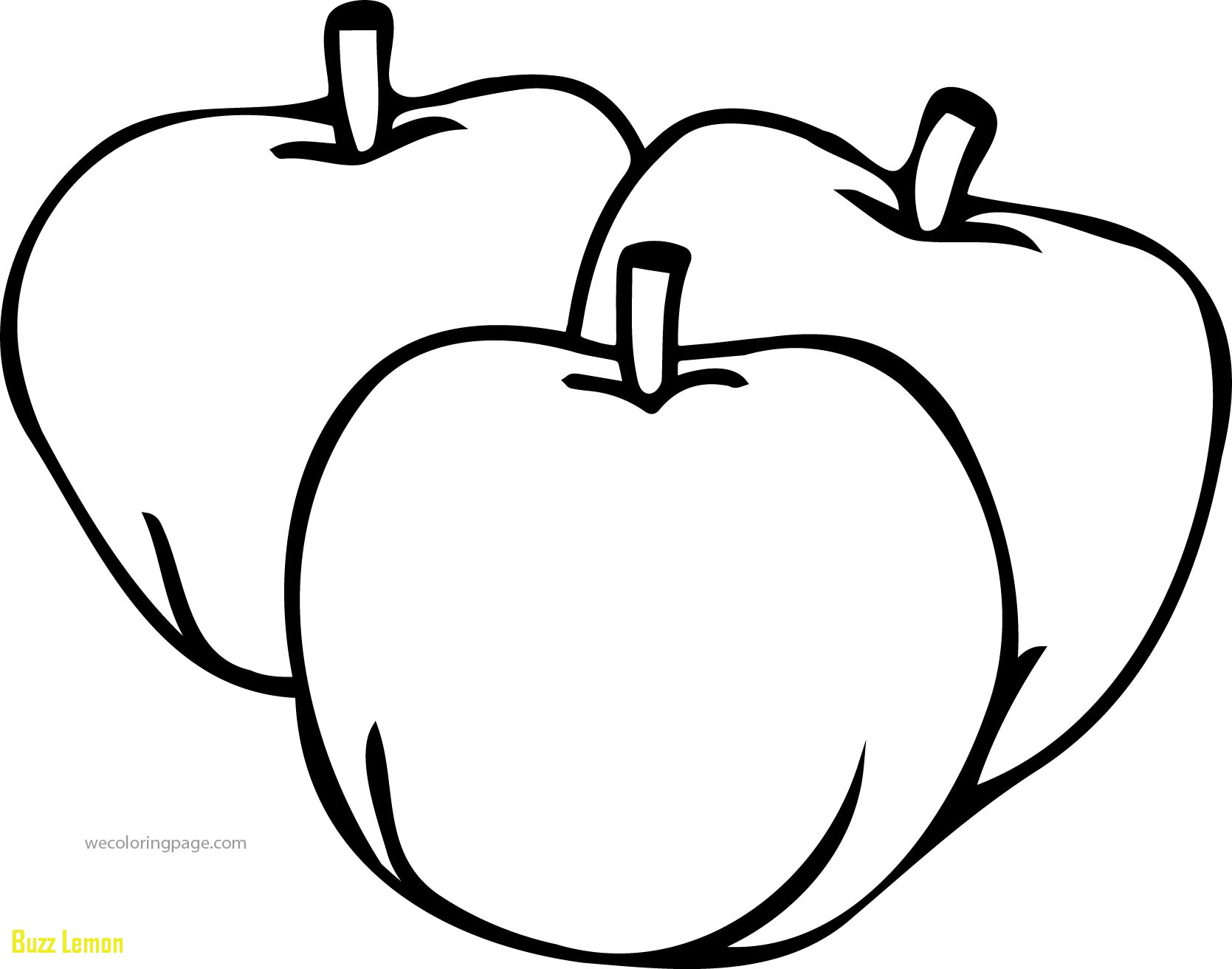 pictures of apples to color free printable apple coloring pages for kids pictures color of to apples