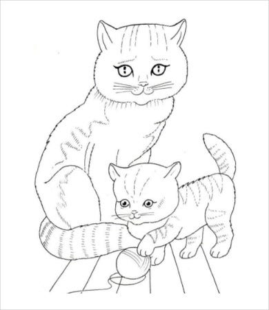 Pictures of cats and kittens to color
