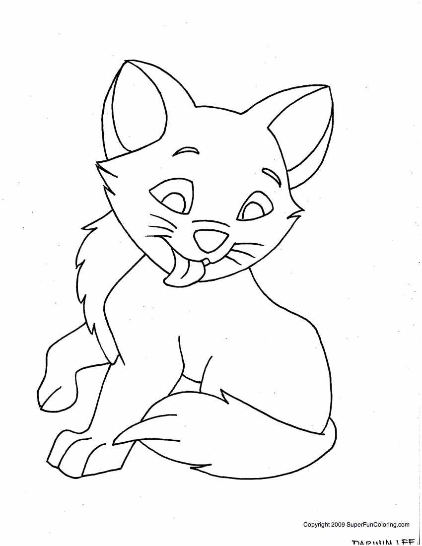 pictures of cats and kittens to color free cat coloring pages pictures of and cats to kittens color