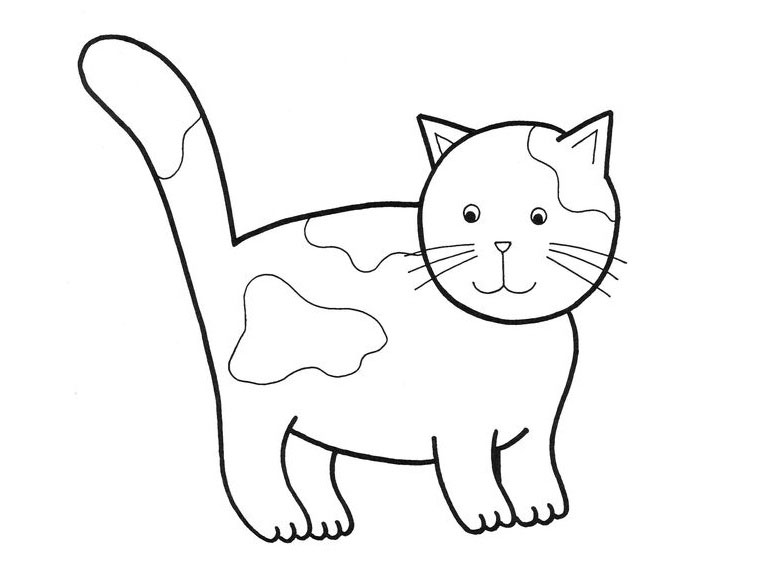 pictures of cats and kittens to color free printable cat coloring pages for kids pictures kittens and cats of to color
