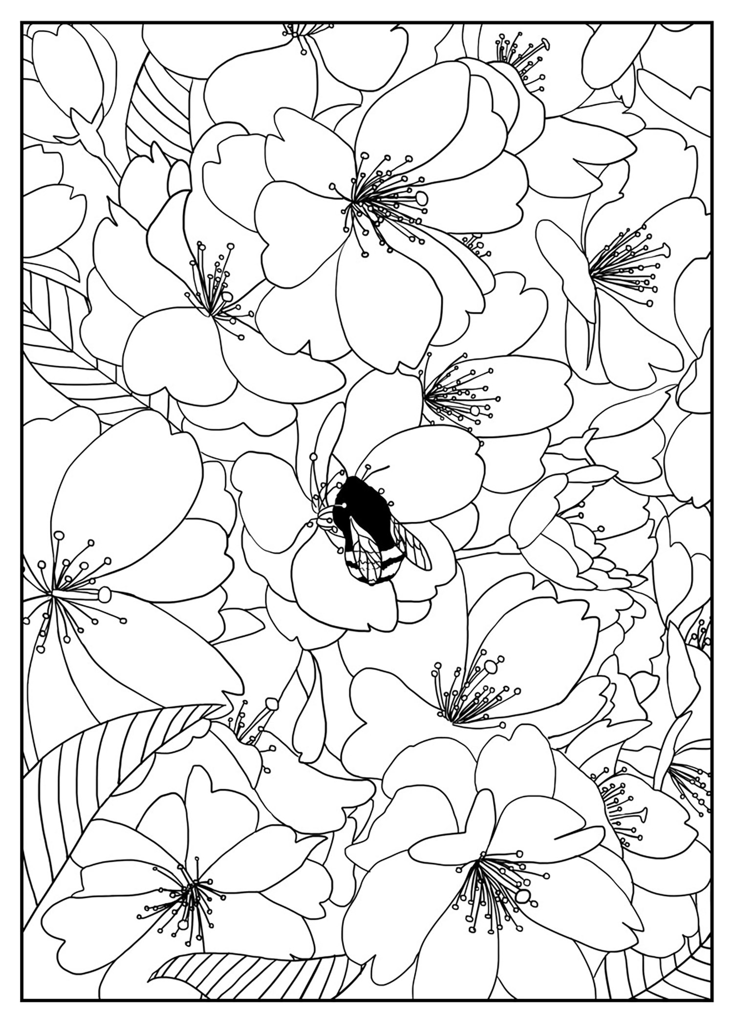 pictures of flowers to color free printables beautiful printable flowers coloring pages flowers color of printables to free pictures