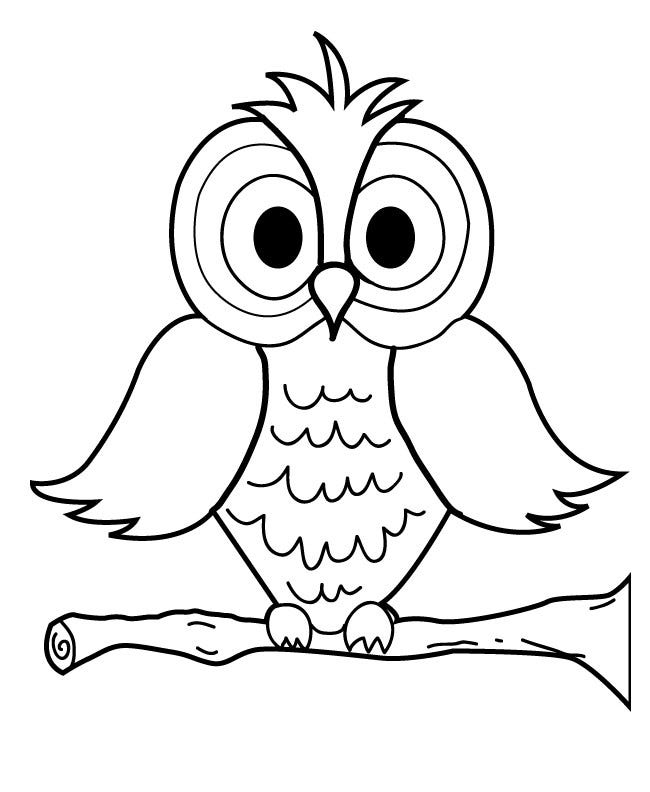 pictures of owls to print cute cartoon baby owl s to print0528 coloring pages printable of to print owls pictures