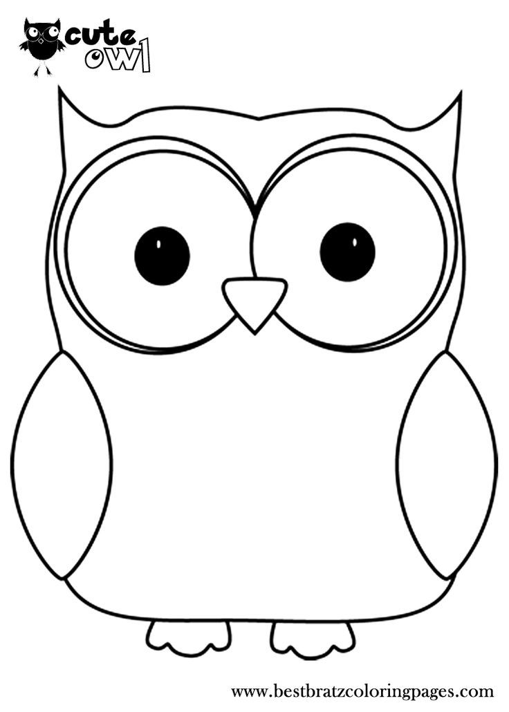pictures of owls to print how to draw a cute snowy owl for kids google search print pictures to owls of