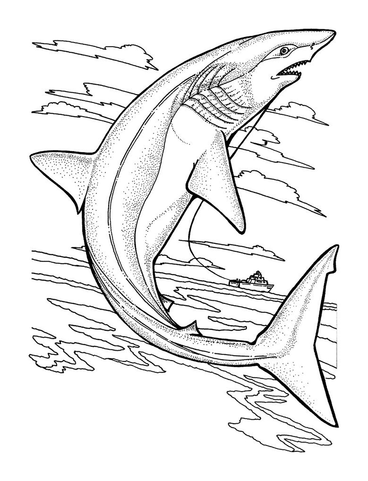 pictures of sharks to colour in free shark coloring pages in to of pictures colour sharks