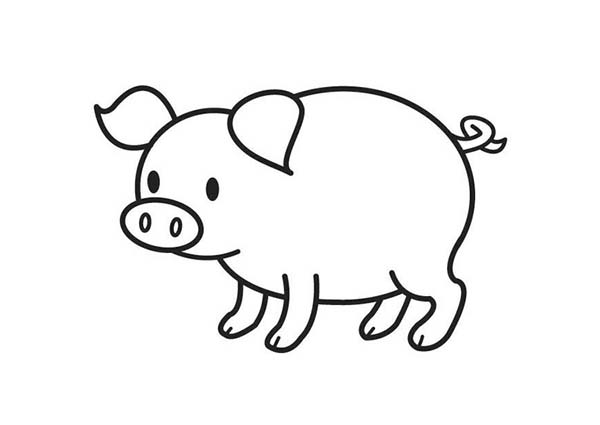 pig pictures to colour cute pig coloring page coloring sky pig colour pictures to