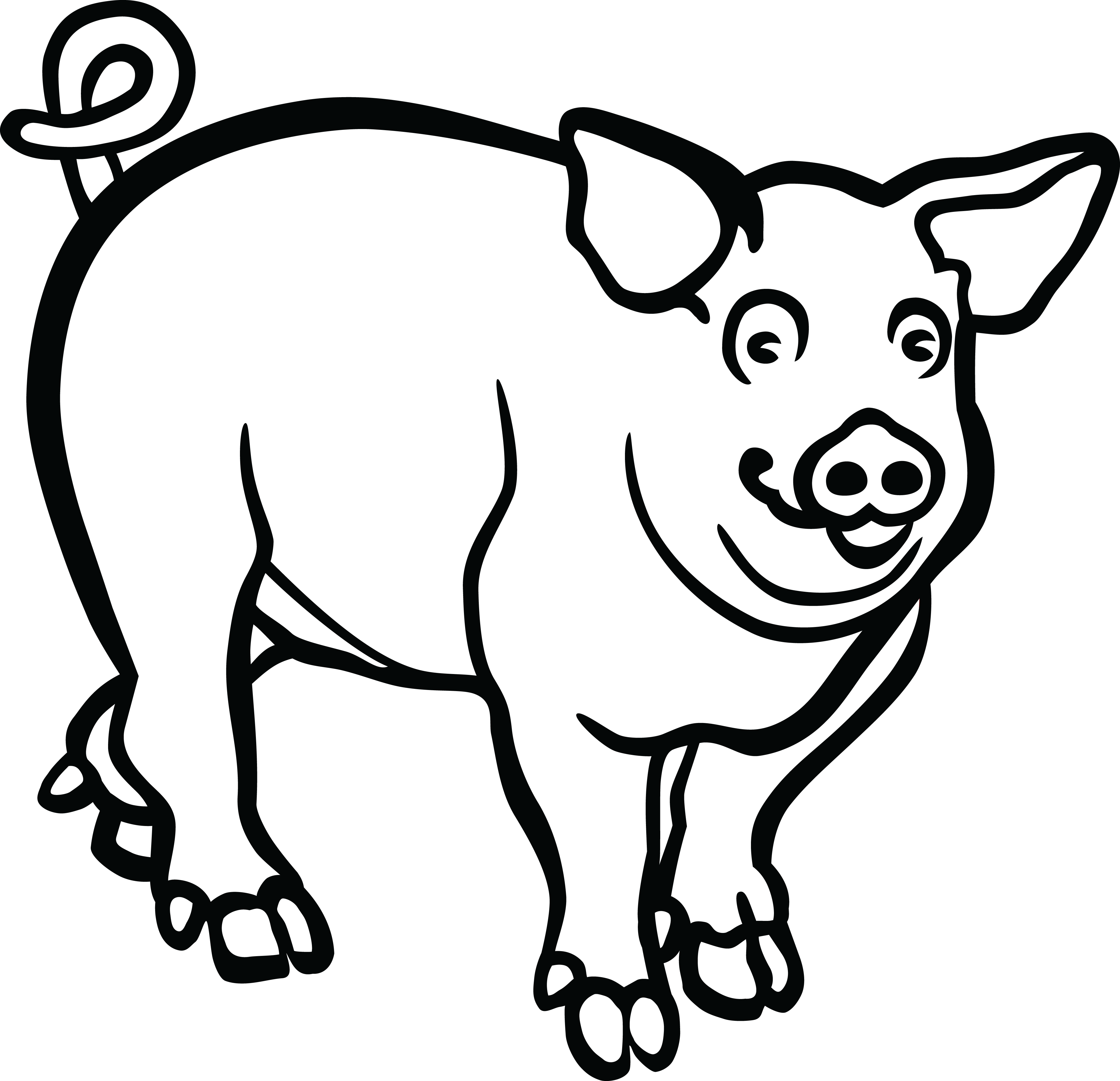 pig pictures to colour free printable pig coloring pages for kids pictures to pig colour