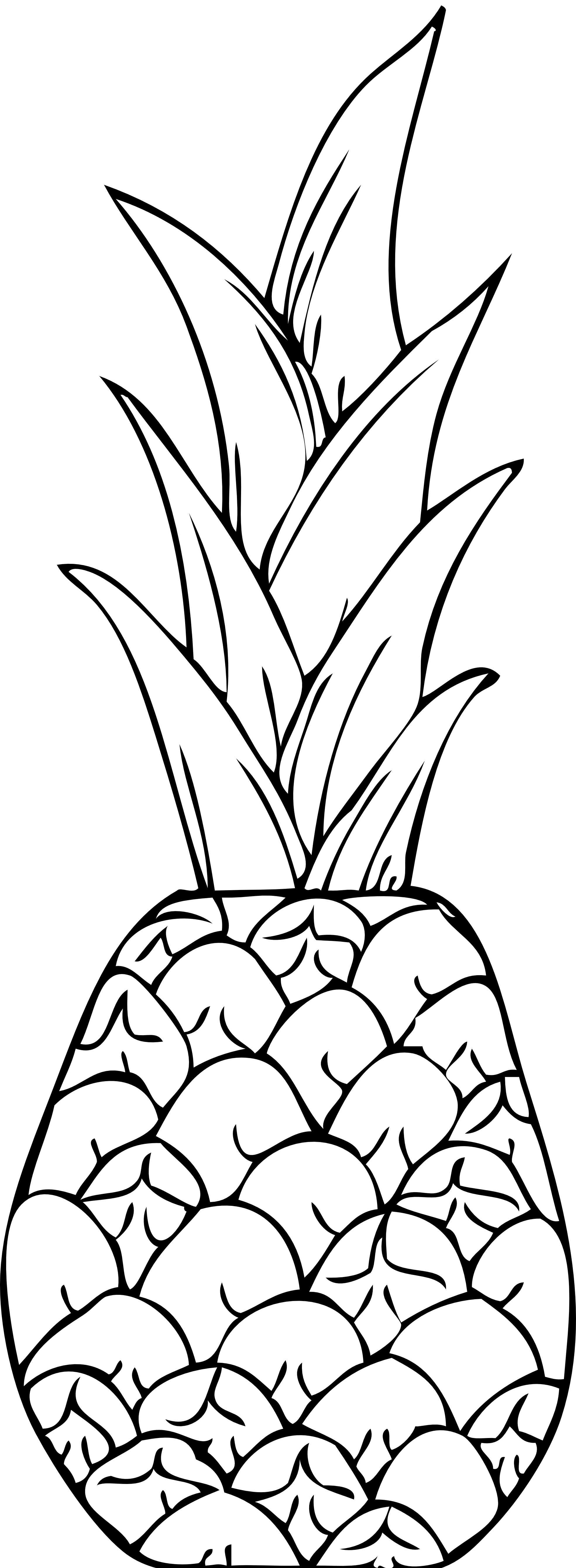 pineapple coloring image a drawing of exotic smooth cayenne pineapple coloring page pineapple coloring image