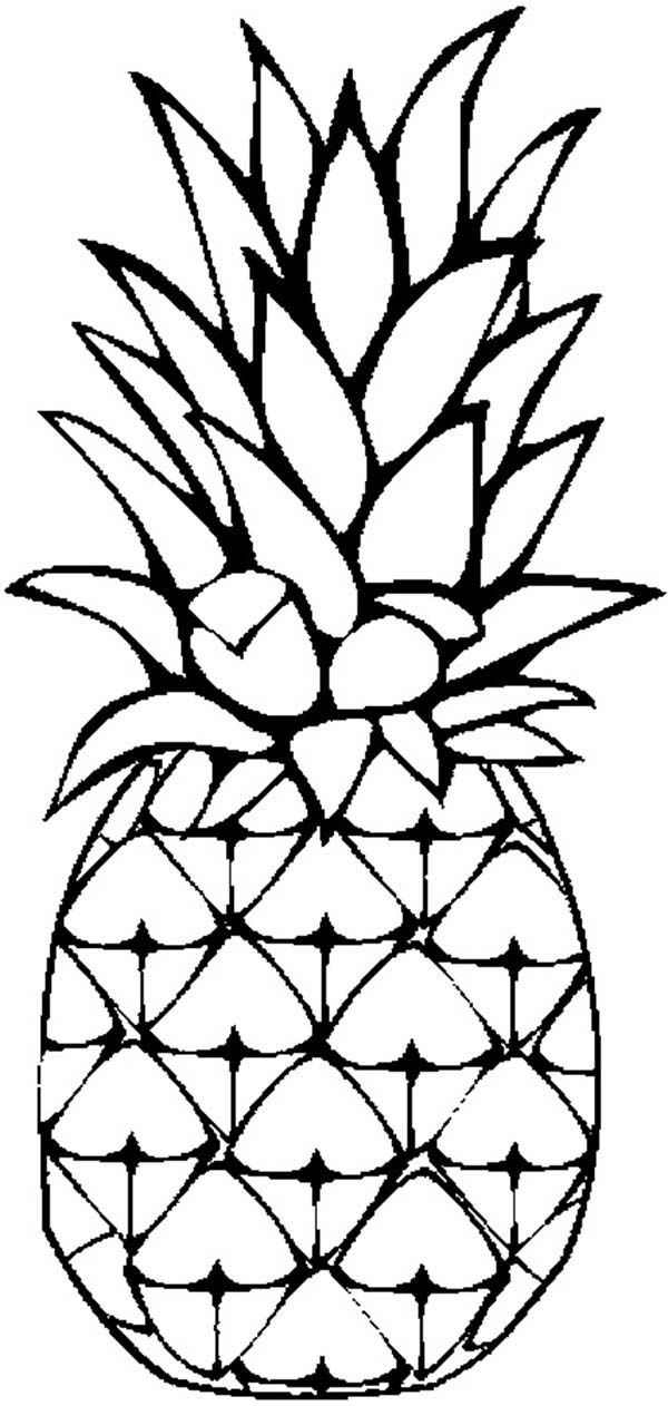 Pineapple coloring image