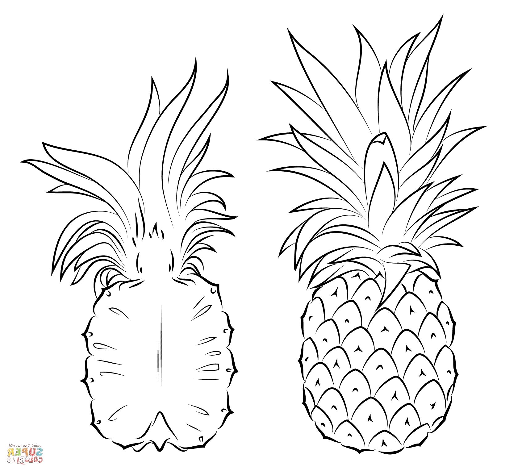 pineapple coloring image pineapple coloring pages image pineapple coloring