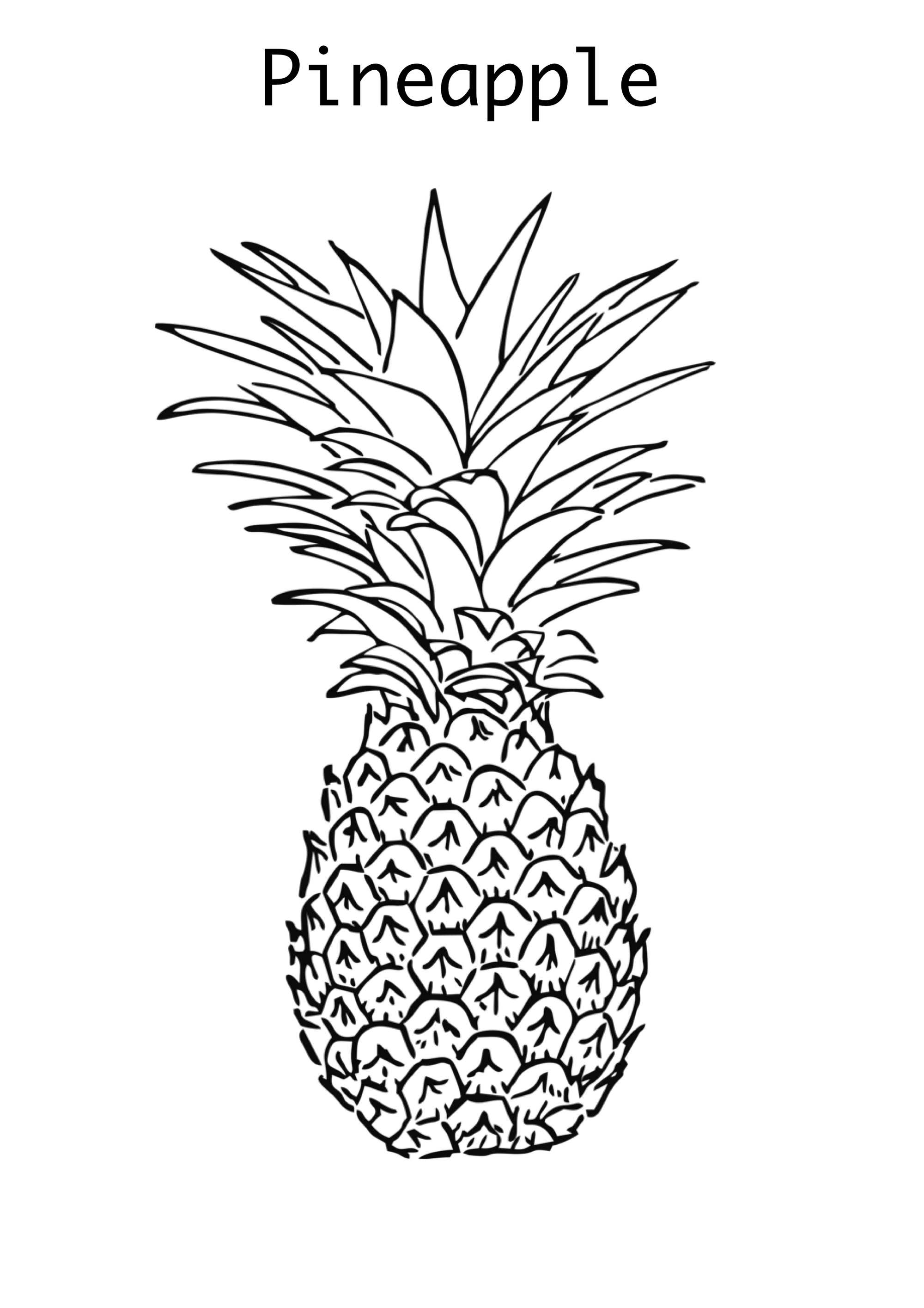 pineapple coloring image pineapple coloring pages to download and print for free coloring pineapple image