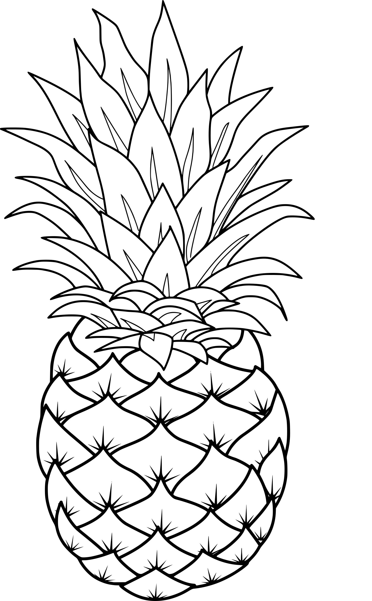 pineapple coloring image printable pineapple coloring pages for kids cool2bkids pineapple image coloring