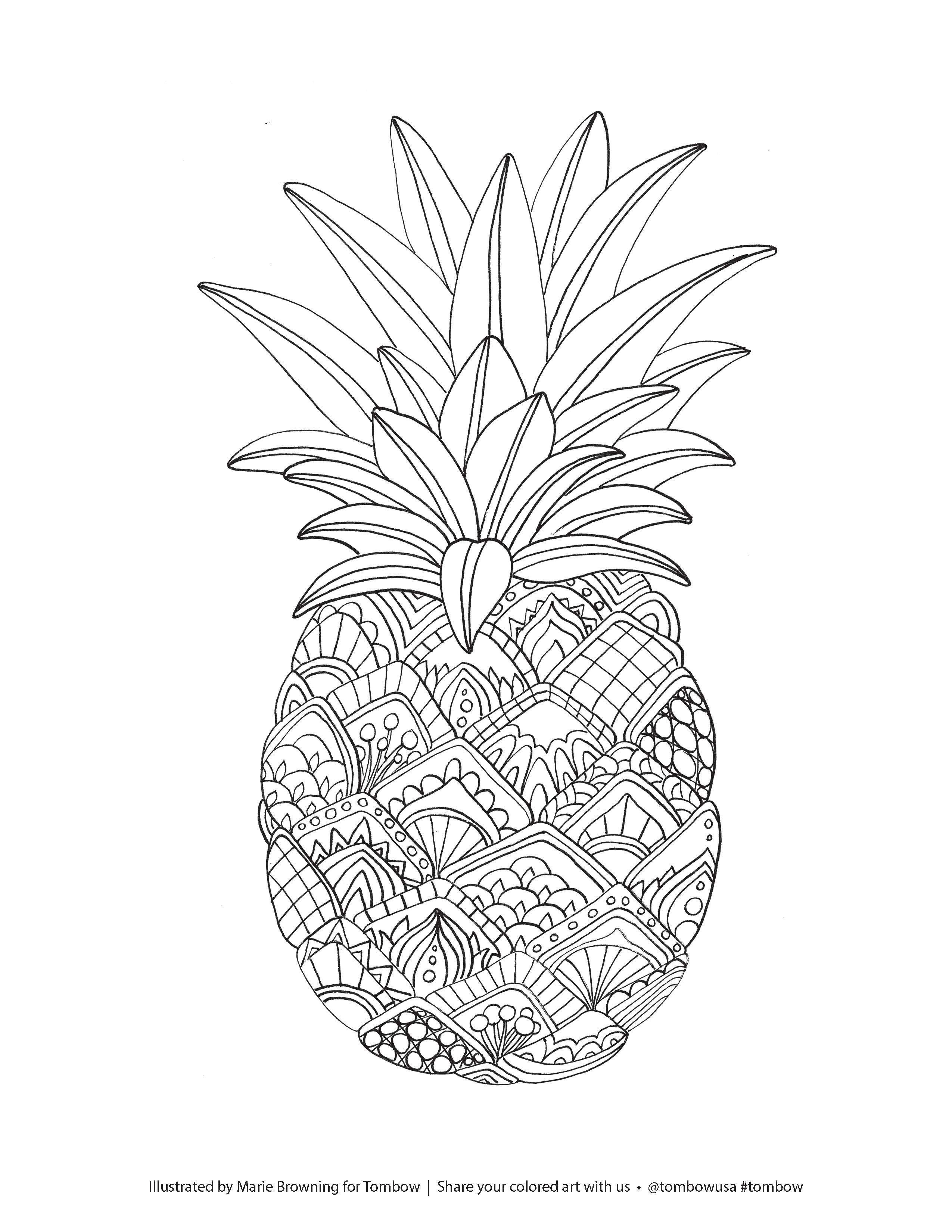 pineapple coloring sheet pineapple coloring pages sheet pineapple coloring