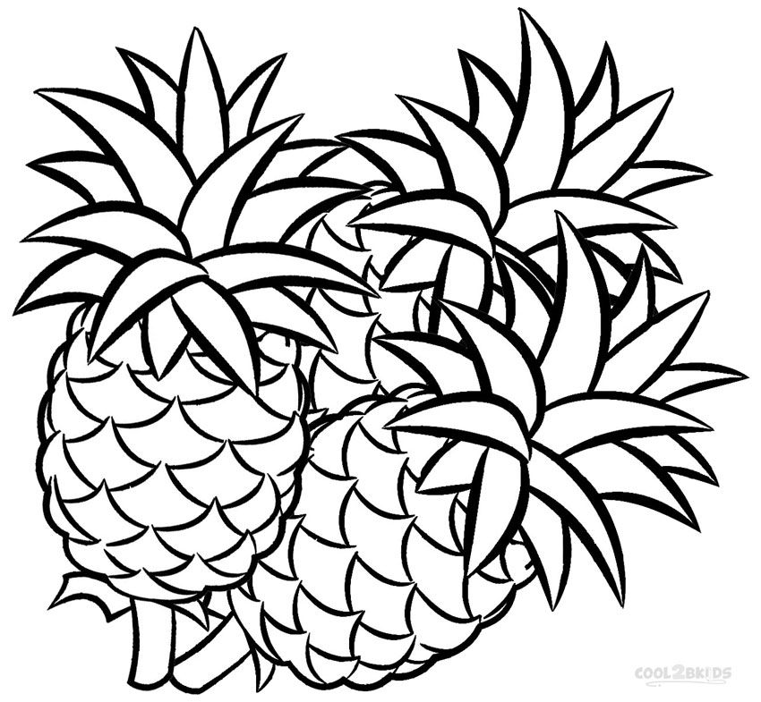 pineapple colouring picture clipart panda free clipart images picture colouring pineapple