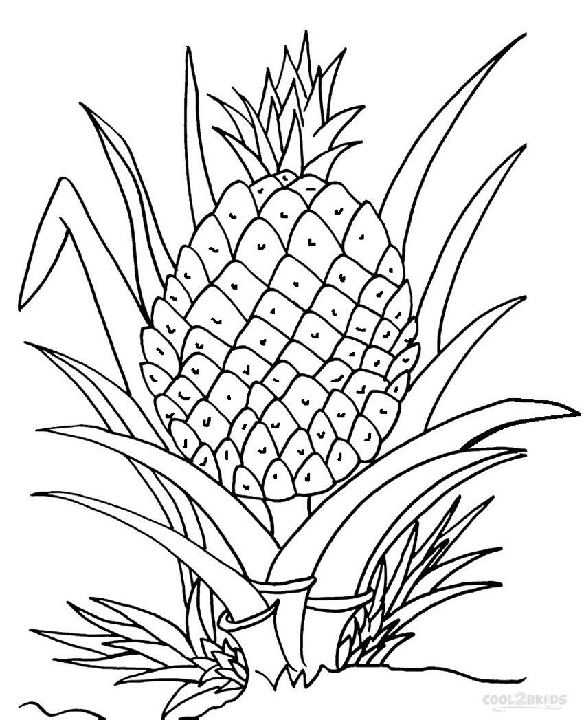 pineapple colouring picture coloring pages pineapple coloring page for kids colouring picture pineapple