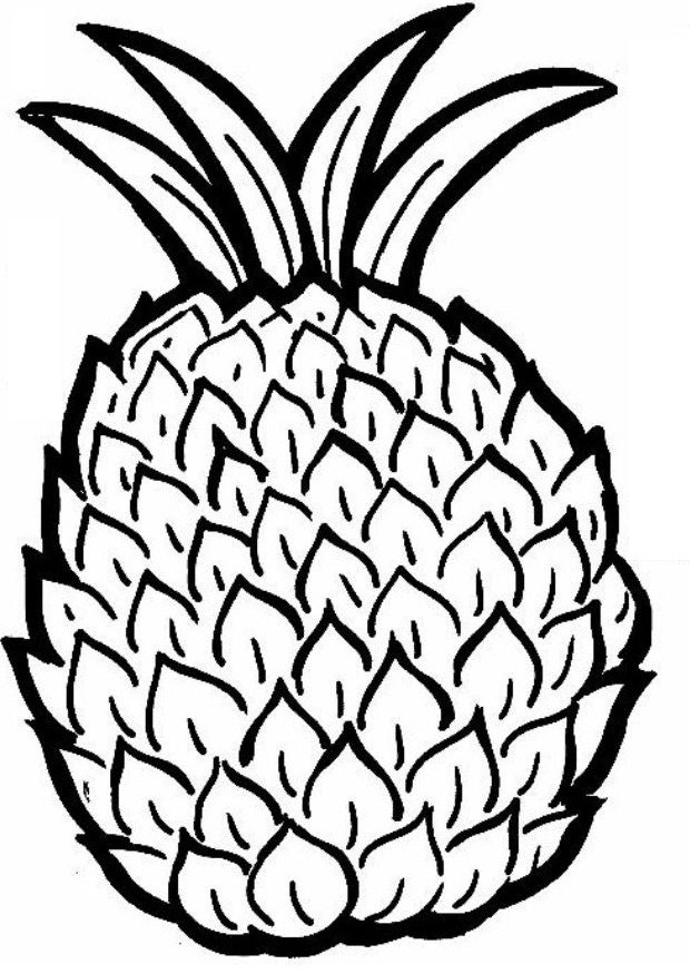 Pineapple colouring picture