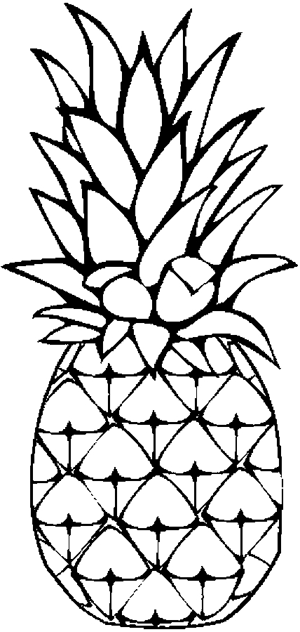 pineapple colouring picture pineapples drawing at getdrawings free download colouring pineapple picture