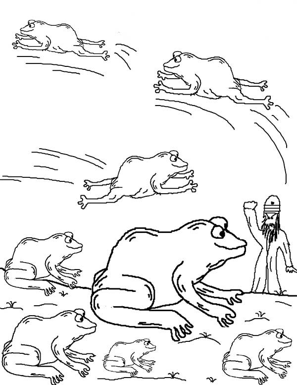 plague of frogs coloring page bible cartoons 10 stages in drawing the plague of frogs plague of coloring frogs page