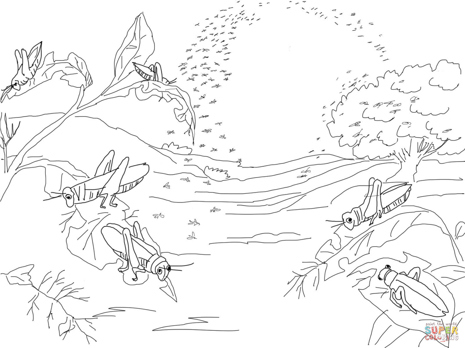 plague of frogs coloring page moses plague plagues of egypt frog coloring pages of coloring frogs plague page