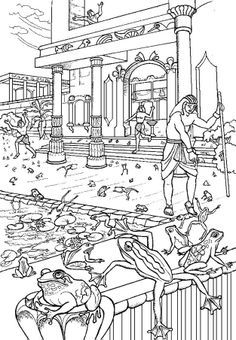plague of frogs coloring page plague of frogs coloring page plague frogs page coloring of