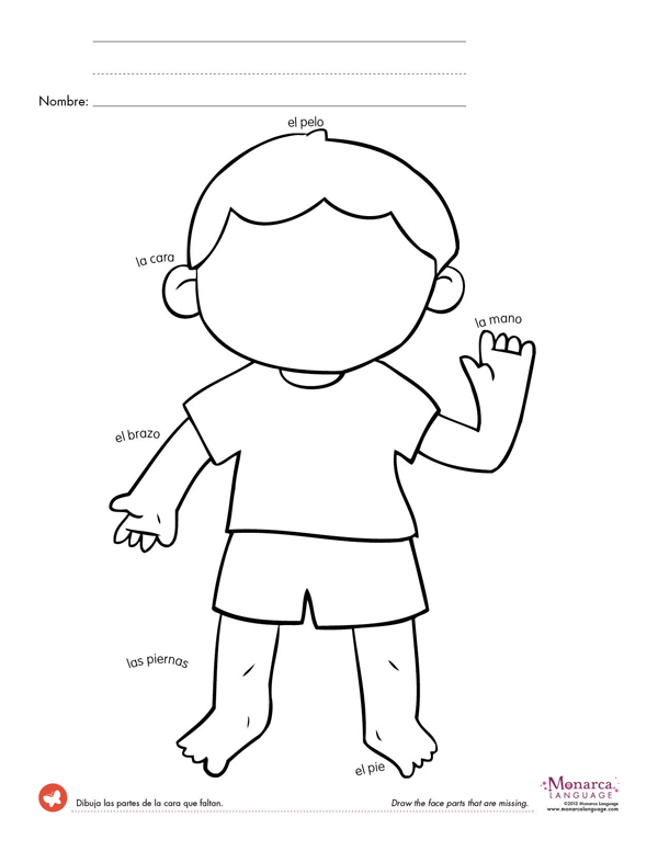 preschool body parts coloring body parts coloring pages for preschool at getdrawings coloring body preschool parts