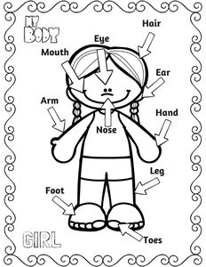 preschool body parts coloring coloring pages of 5 senses coloring home coloring preschool body parts