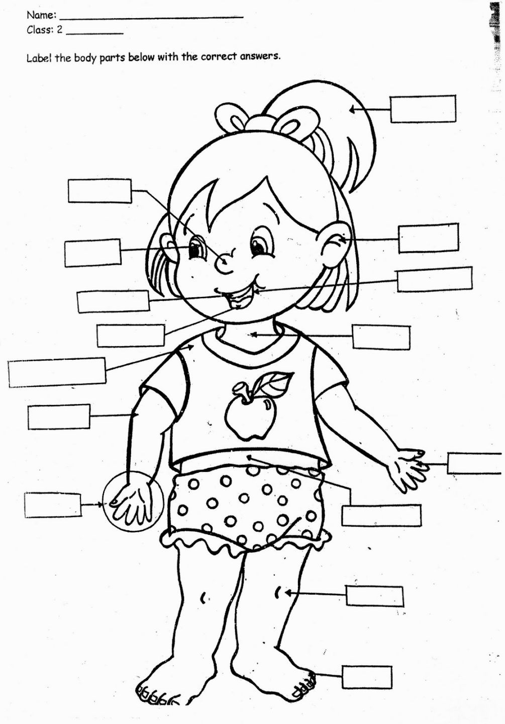 preschool body parts coloring preschool body parts coloring parts body preschool coloring