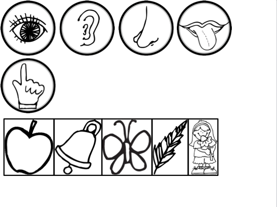 printable 5 senses coloring pages the five senses printable worksheets mini book 5 printable senses coloring pages