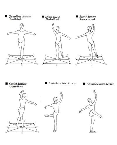 printable ballet positions arm positions i am amazed at how hard it is to hold up printable ballet positions