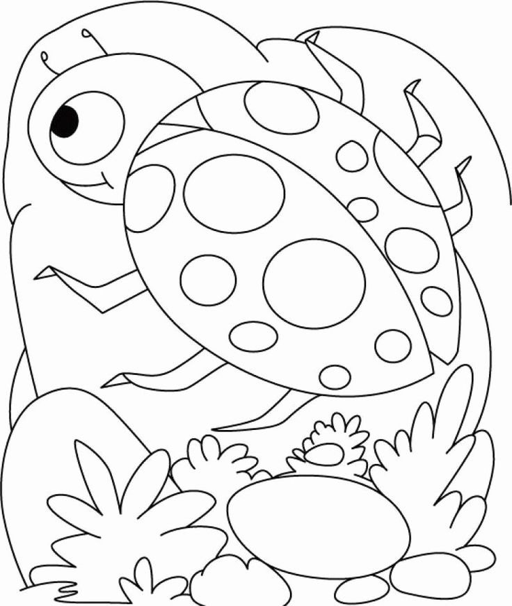 printable bug coloring pages computer coloring pages for kids at getcoloringscom coloring printable pages bug