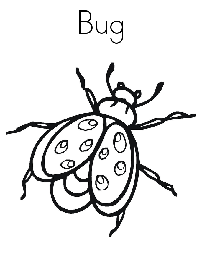 printable bug coloring pages cute bugs colouring page applique coloring pages pages bug coloring printable