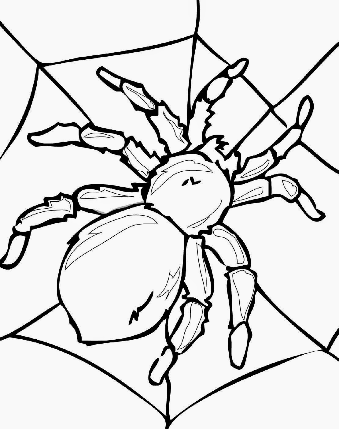 printable bug coloring pages insects to print insects kids coloring pages pages printable coloring bug