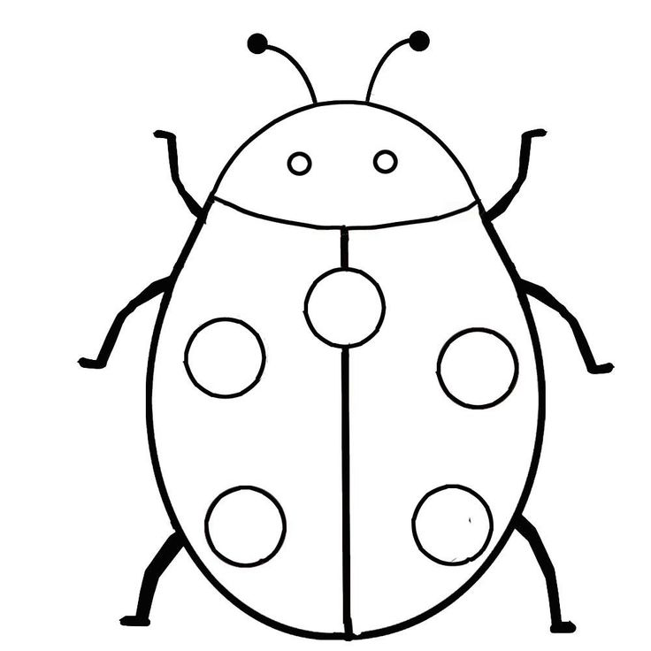 printable bug coloring pages printable pictures of insects free download on clipartmag bug printable pages coloring