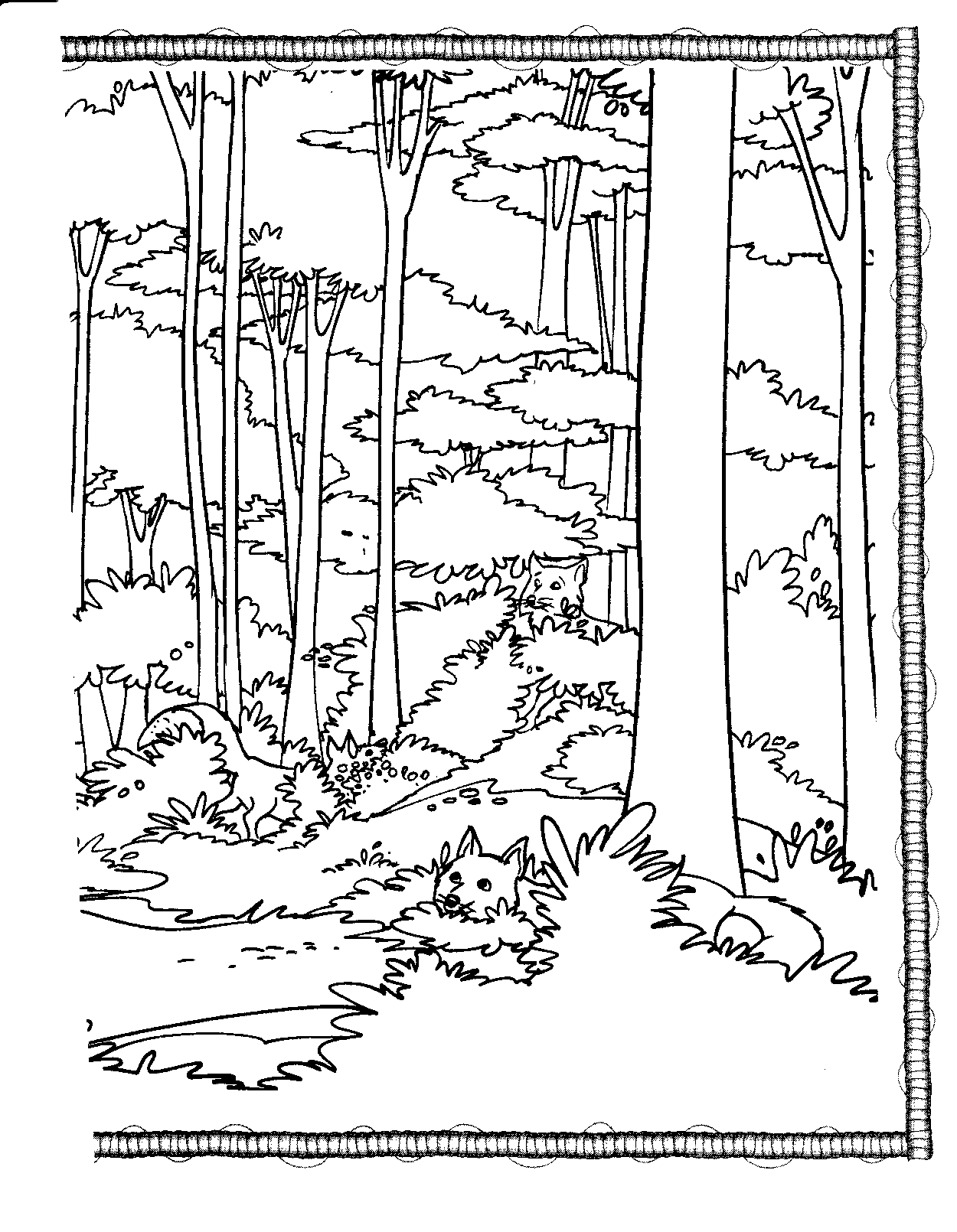 printable forest pictures forest coloring pages best coloring pages for kids pictures forest printable