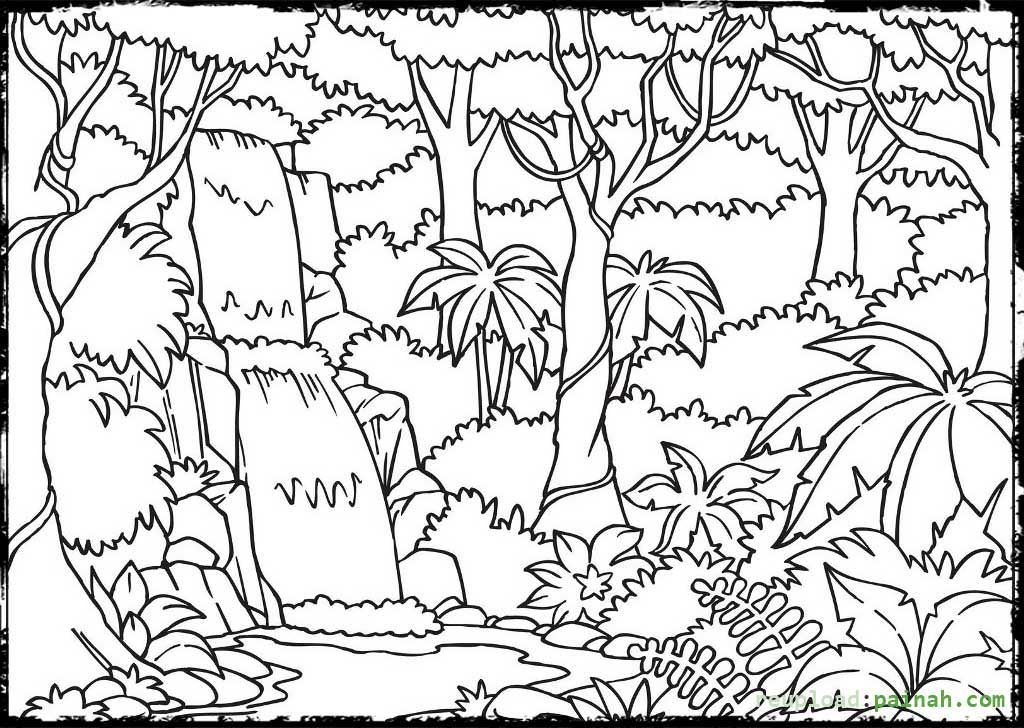 printable forest pictures forest coloring pages for kids at getdrawings free download printable forest pictures