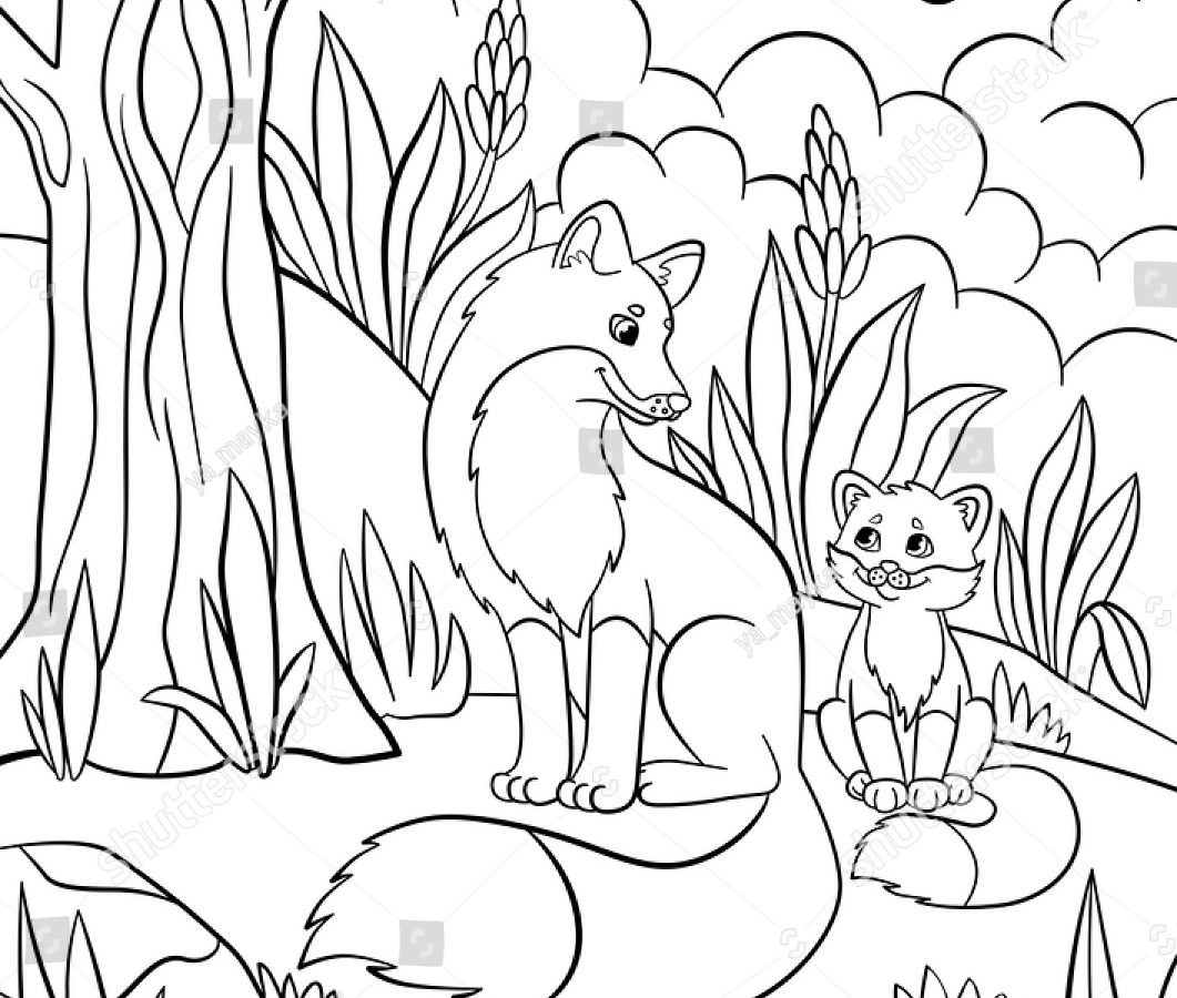 printable forest pictures forest trees drawing at getdrawings free download printable pictures forest