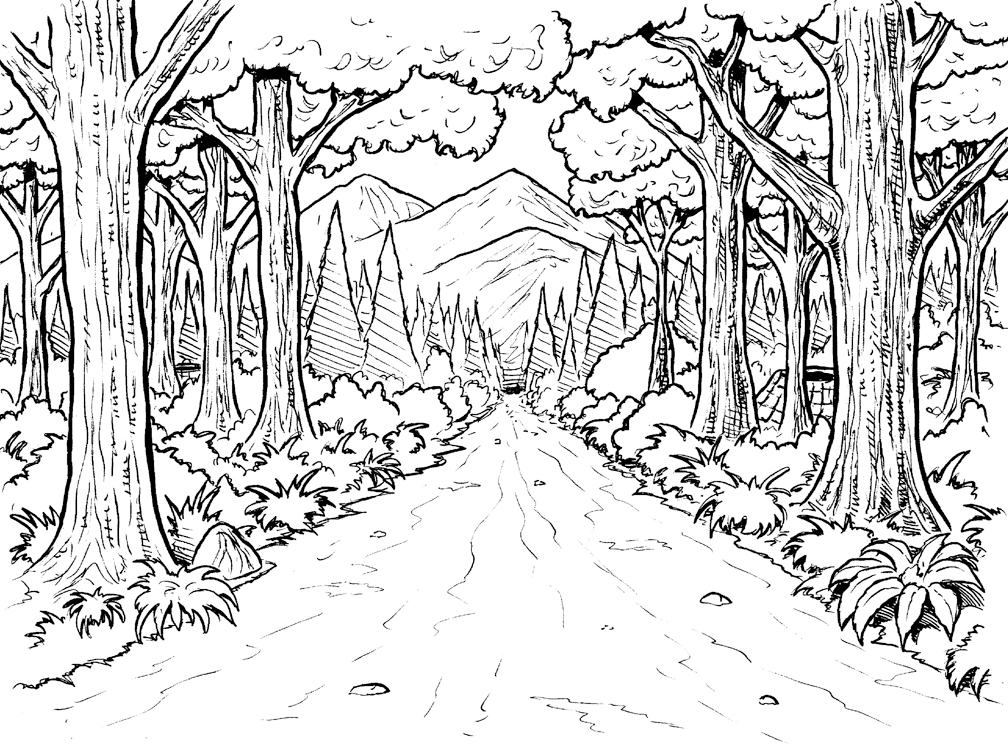 Printable forest pictures