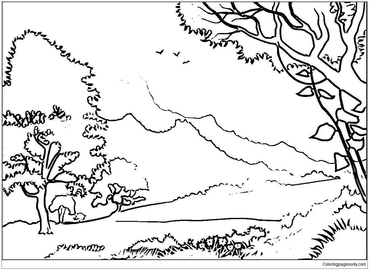 printable forest pictures free rainforest coloring pages at getcoloringscom free printable forest pictures
