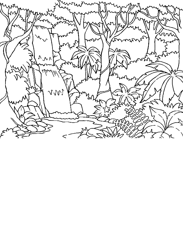 printable forest pictures free rainforest coloring pages free coloring pages printable forest pictures