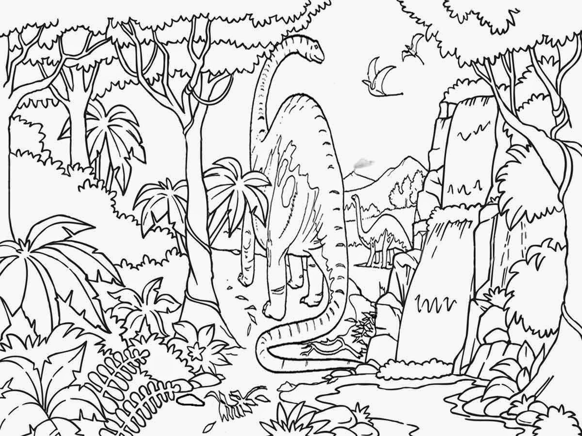 printable forest pictures rainforest coloring pages free printable coloring sheets forest pictures printable