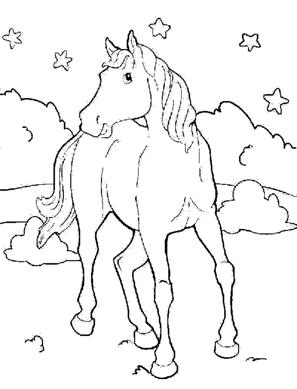 printable horse colouring pages coloring pages of horses printable free coloring sheets colouring printable pages horse