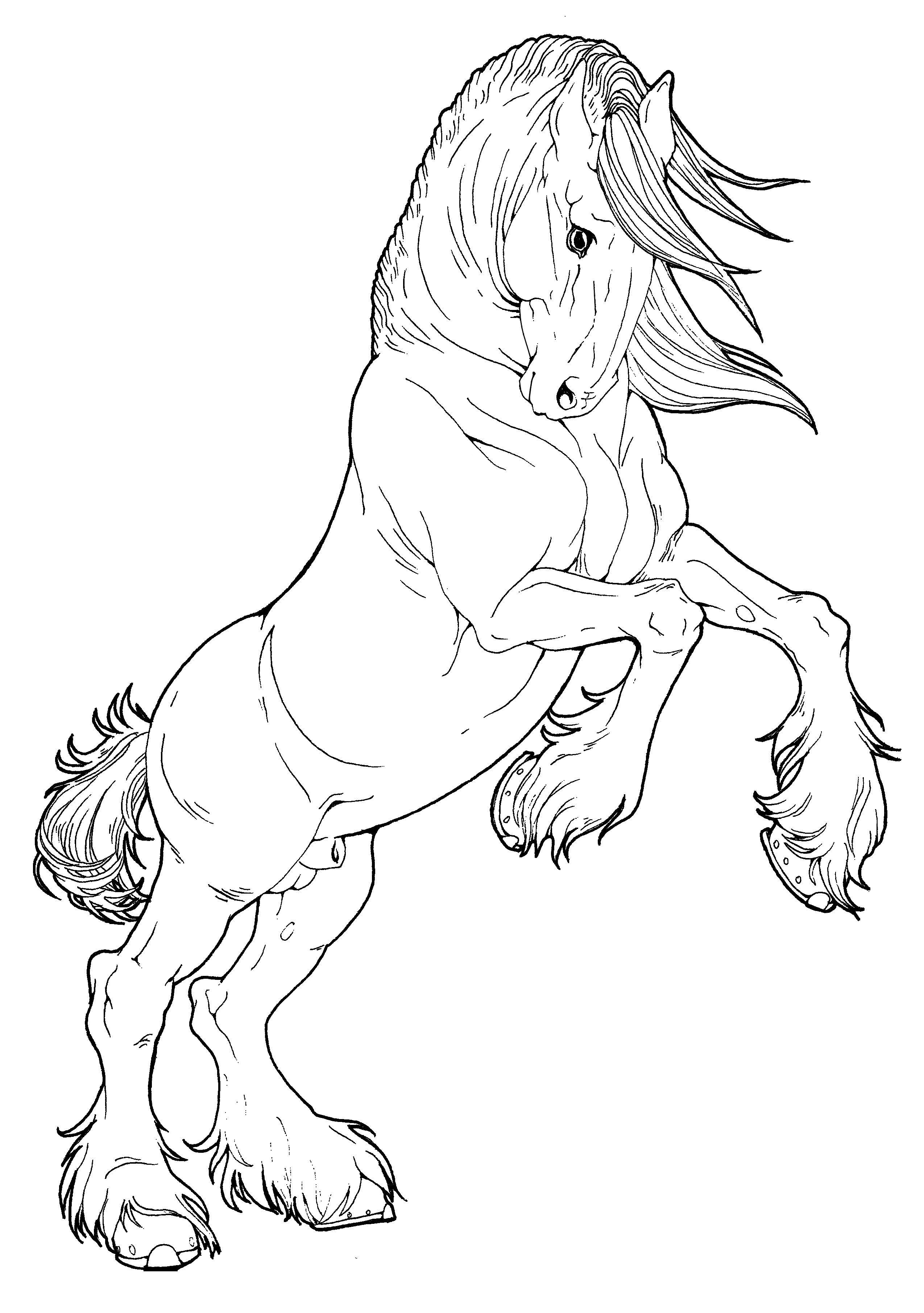 printable horse colouring pages cute horse coloring pages at getcoloringscom free colouring printable horse pages