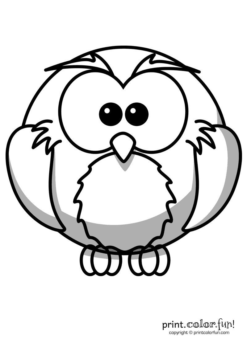 printable owl images cartoon owl coloring page print color fun images owl printable
