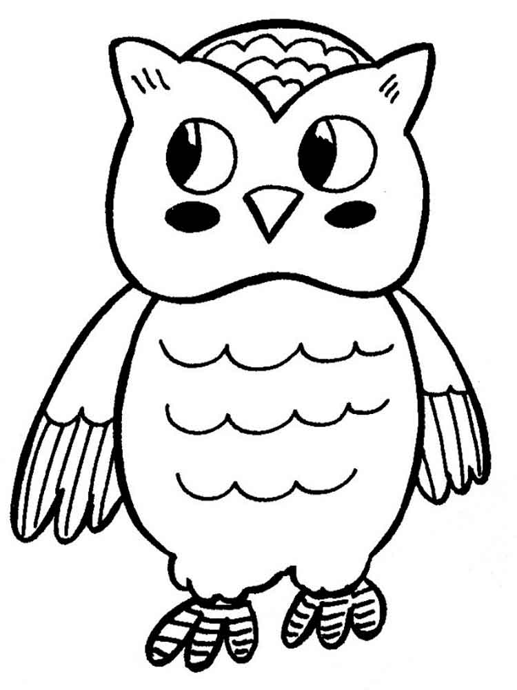printable owl images owl coloring pages download and print owl coloring pages images printable owl